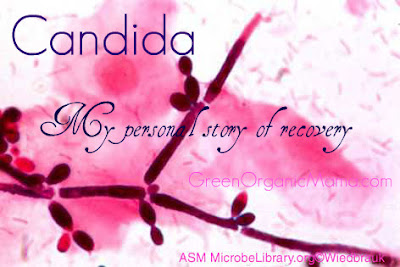 My personal story of recovering from Candida overgrowth