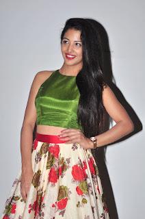 Daksha Nagarkar at hora hori audio 010.JPG