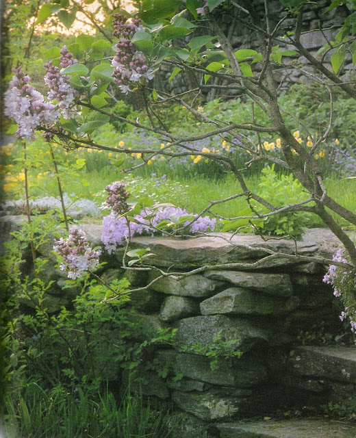 TTasha Tudor's Garden by Tovah Martin, photographed by Robert Brown as seen on linenandlavender.net, see full post:  http://www.linenandlavender.net/2012/06/flowers-in-profusion-tasha-tudors.html