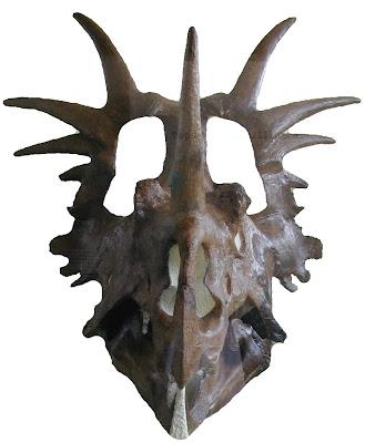 Styracosaurus skull