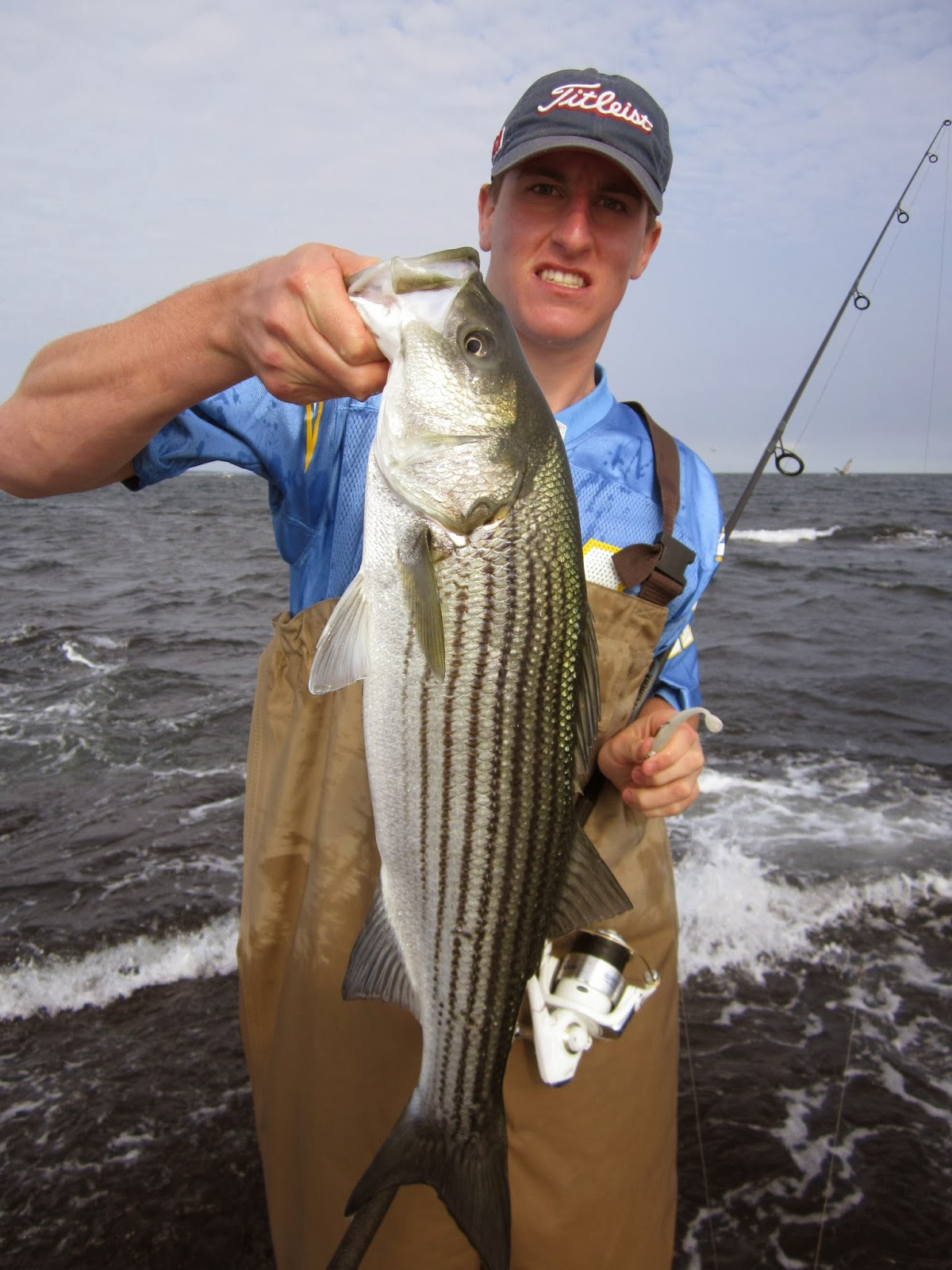 Rhode island striped bass big time shore blitz finally for Today fishing times