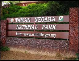 Taman Negara-The Premier Of National Park