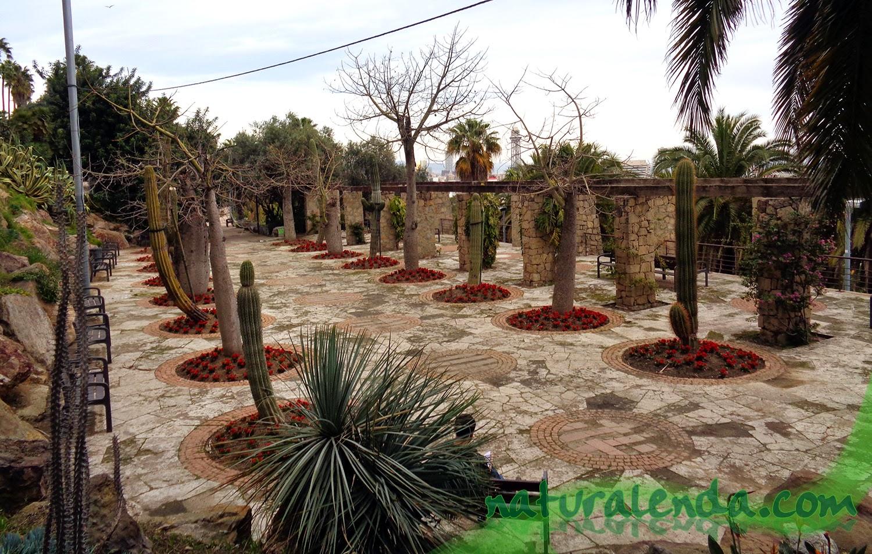 parque con cactus