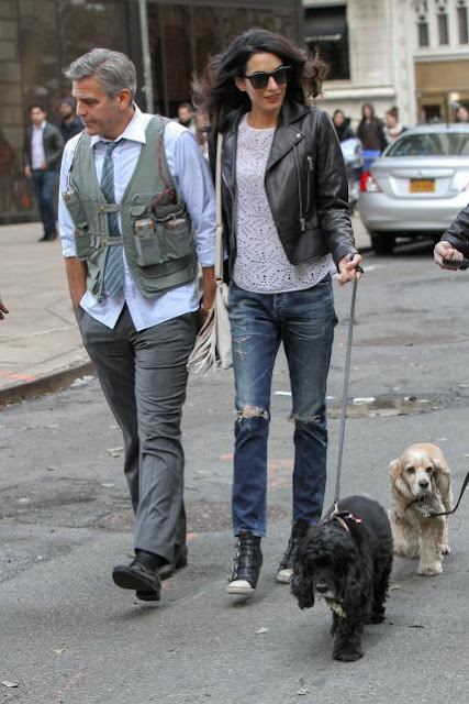 Amal-George-And-Dogs