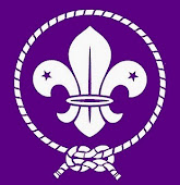 World Scout Emblem