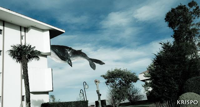 ballena volando en el cielo