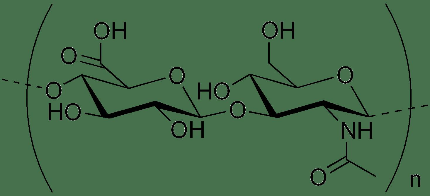 quimica organica ii fiqt  carbohidratos