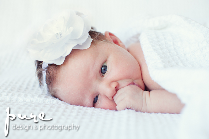 - Pure Design Photography (6)