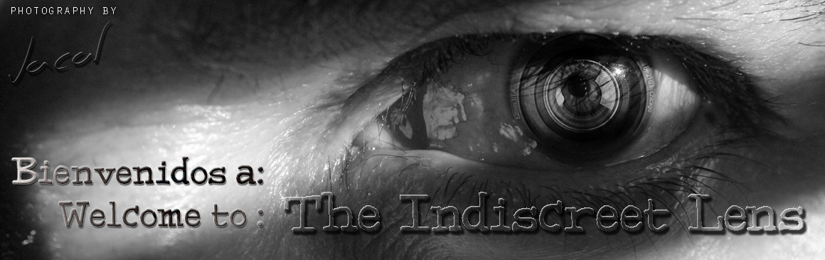 the indiscreet lens