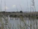 Algarve - Pera - Lagoa dos Salgados