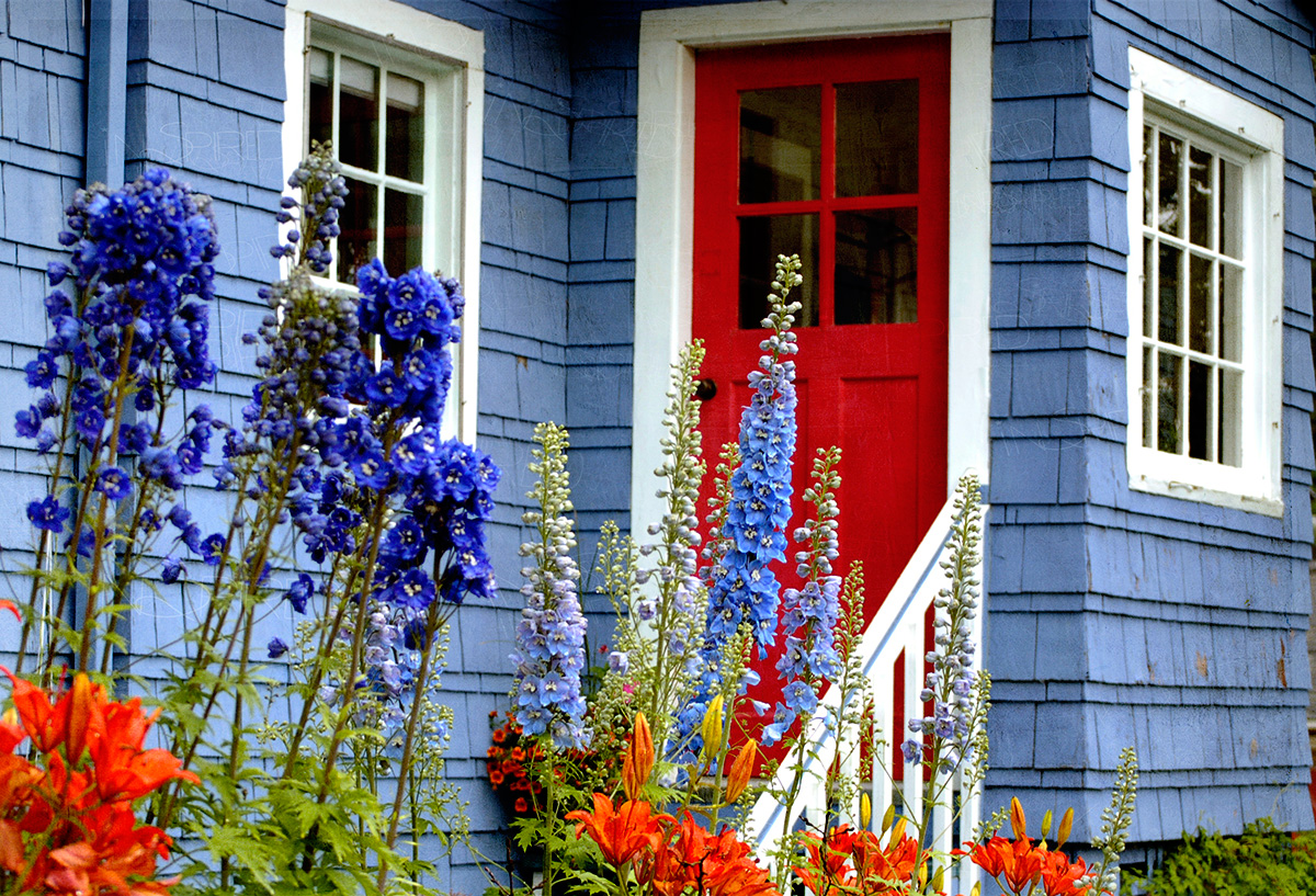 Blue House With Red Doors Design Ideas Doors Texture