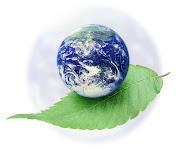 Dünyada temiz suyun herkese sağlanması için gerekli para 10 milyar dolar.