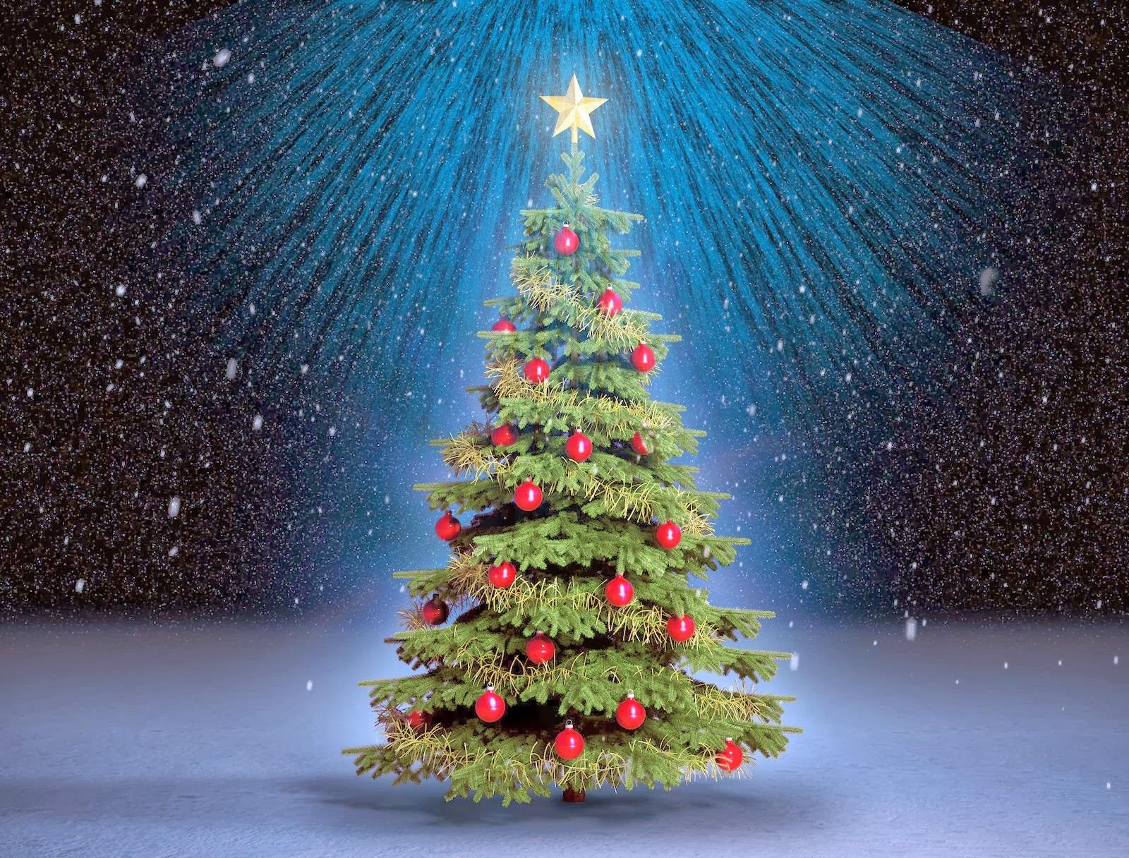 Formaci n pastoral para laicos bendici n del rbol de navidad - Ver arboles de navidad ...