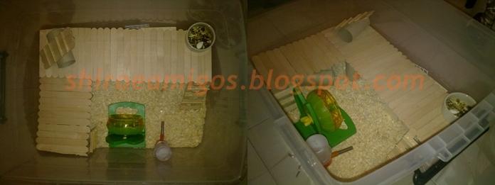 Postem as fotos do lugar onde seu ham mora  - Página 7 31052012694-horz