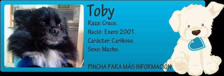 http://mirada-animal-toledo.blogspot.com.es/2014/03/toby-su-duena-se-muere-y-se-va-la.html