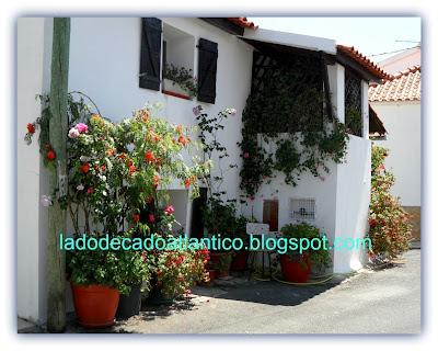 Casa de esquina com fachada florida numa ruelas do povoado do Ameal, Torres Vedras, Portugal