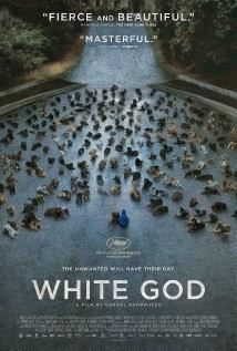 White God (2014) - Movie Review