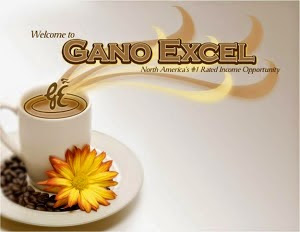 Gano Excel Healthy Gourmet products