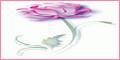 http://dicasdeaaamorrr.blogspot.com.br/2010/03/linke-me_09.html#.Us1McrTy-mg