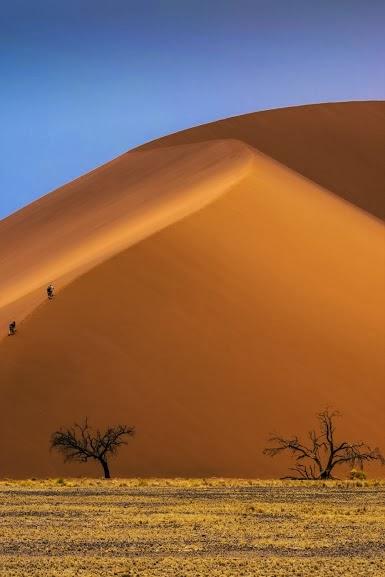 Africa Sahara Desert