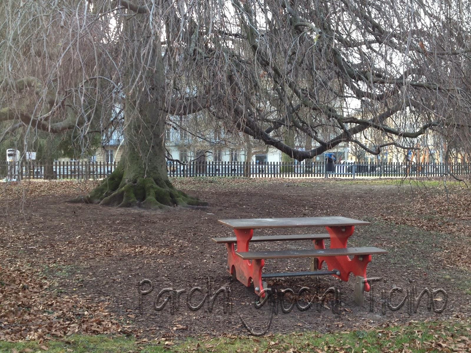 Parco giochi jardin anglais neuch tel parchi giochi ticino for Jardin anglais neuchatel