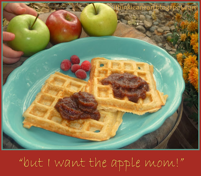 {I Think I Can}:  Cranapple Butter (Overnight in the Crockpot)---COOKS WHILE YOU SLEEP!  Makes the house smell amazing!