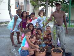 PROJETOS DE PLANTIO DE ÁRVORES DO TOCHA
