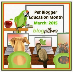 BLOGPAWS BLOGGER EDUCATION MONTH