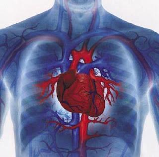 كيف تخفض من خطر مرض القلب