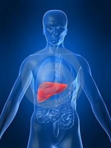 hígado,ferritina,hierro,hemocromatosis,sanar el hígado