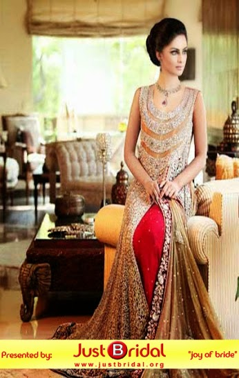 latest Pakistai dulhan dress ideas