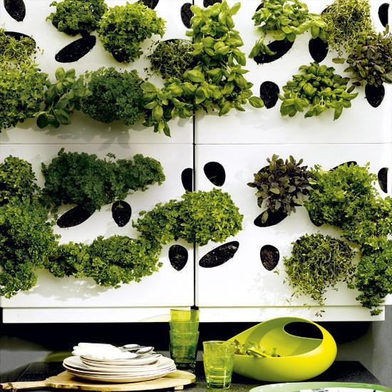 VITEO Urban Gardenwall - Pflanzen-Raumteiler für Haus & Garten