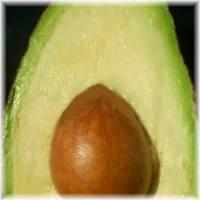 Manfaat Buah Alpukat, alpukat, avocados, buah alpukat