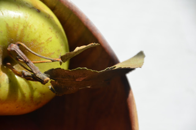 Apple in wood bowl
