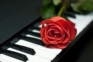 Dia San Valentin con Flores