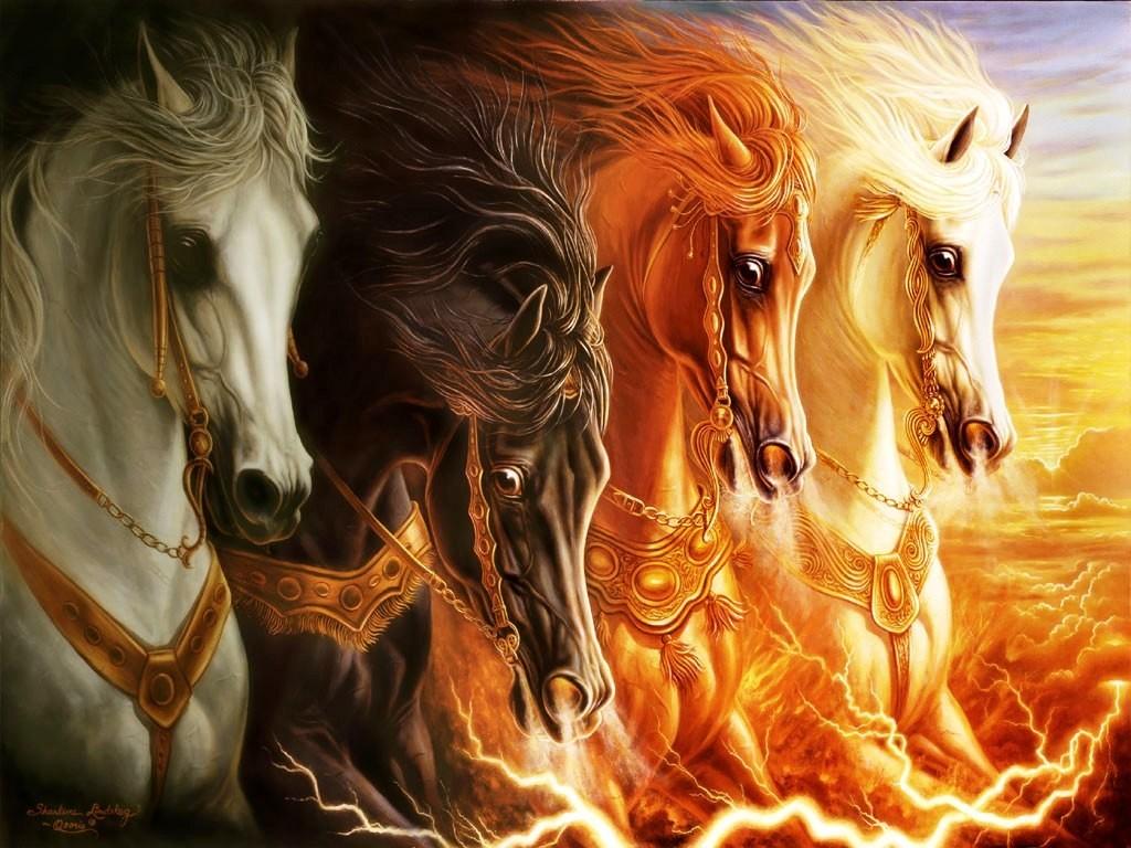Imagenes de caballos salvajes
