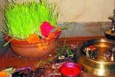 jamara at ghatasthapa dashain