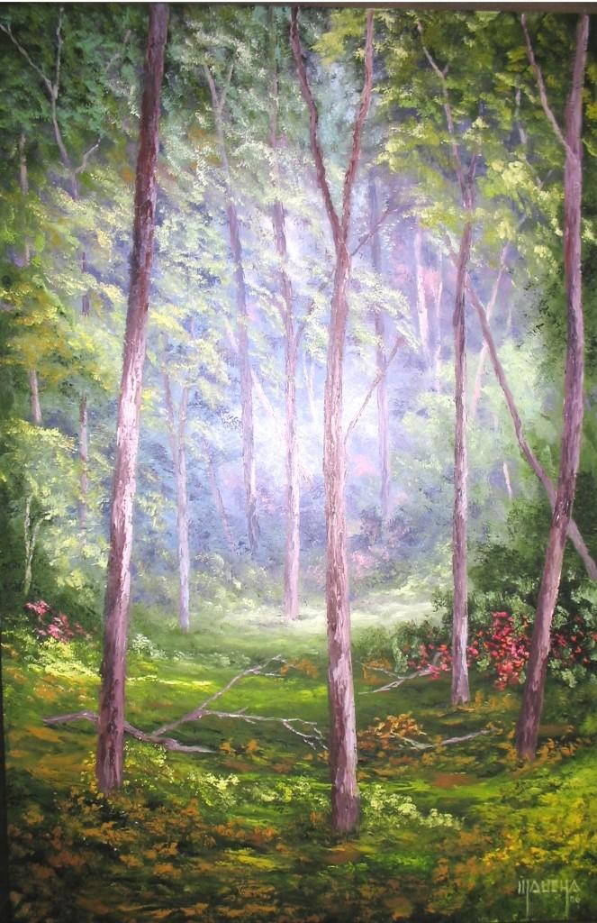 """""""Floresta de Eucalíptos"""""""