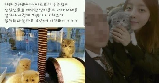 junhyung and hara still dating 2012 nissan
