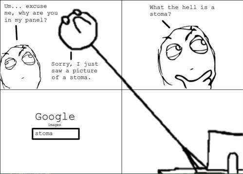 Okay google fuck me