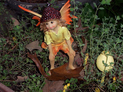 My Autumn Fairy