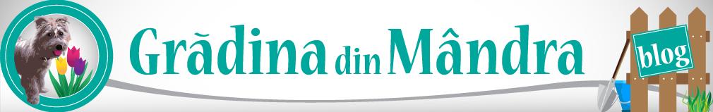 Gradina din Mandra