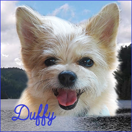 Duffy