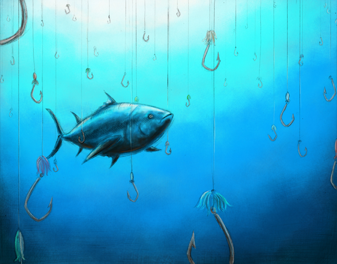 overfishing a global issue essay Research papers on overfishing overfishing research papers discuss the problem of extinction of ocean life, discovered by oceanographers research papers on.