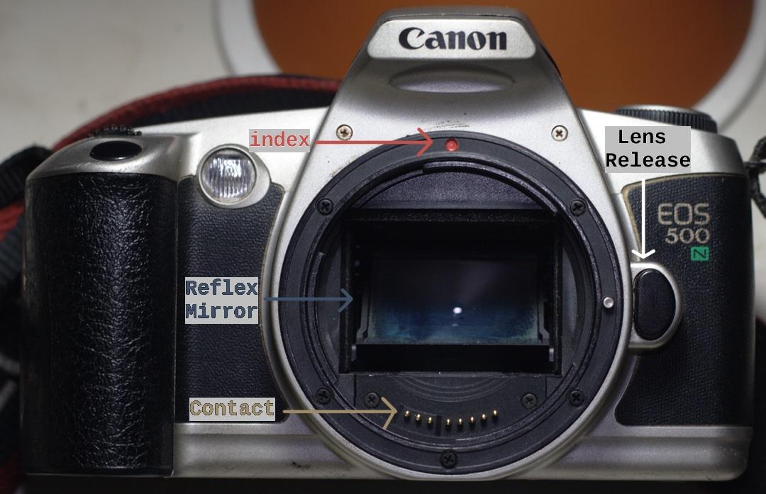 Belajar slr mengenal fisik kamera d slr bagian ii