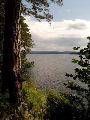 озеро тургояк фото