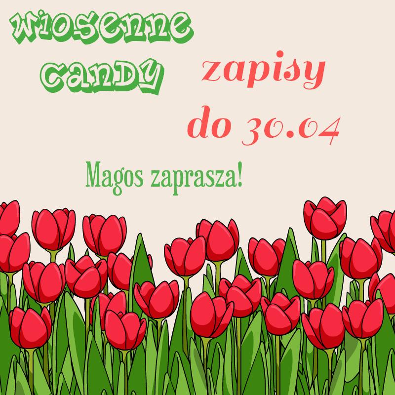 Candy Wiosenne u Magos