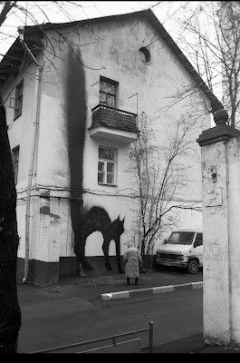 fachadas de lienzo