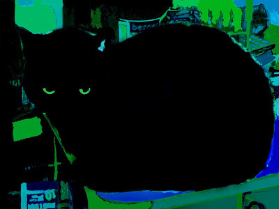 black silhouette of a cat with yellow green eyes and a yellow green to blue shapes environment