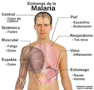 Cuidado con el Paludismo